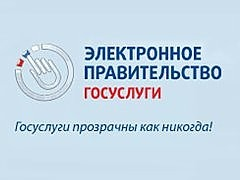 SPEKTR_AUDIT_Minkomsvjazi_RF_Gosuslugi