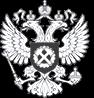SPEKTR_AUDIT_Rostrud_logo