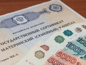 SPECTR_AUDIT_Polit_ru_matkapital_2015
