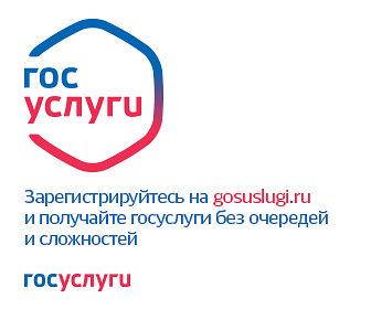 SPEKTR_AUDIT_Rostovskaja_Oblast_gosuslugi_uterja_documentov