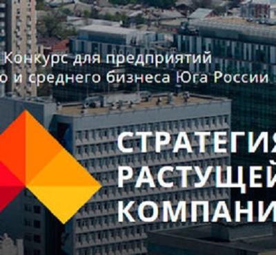 SPEKTR_AUDIT_Rostov_MSP_konkurs_2017