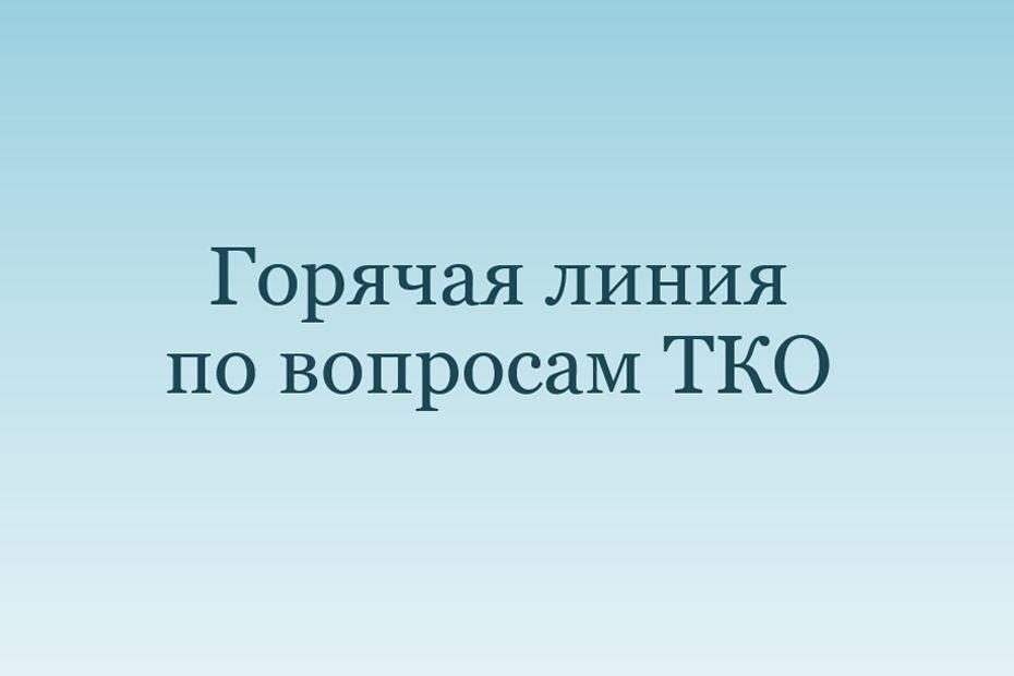 SPEKTR_AUDIT_TKO_gorjachaja_linija_2019